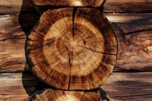 Efectos positivos de utilizar madera en bioconstruccion