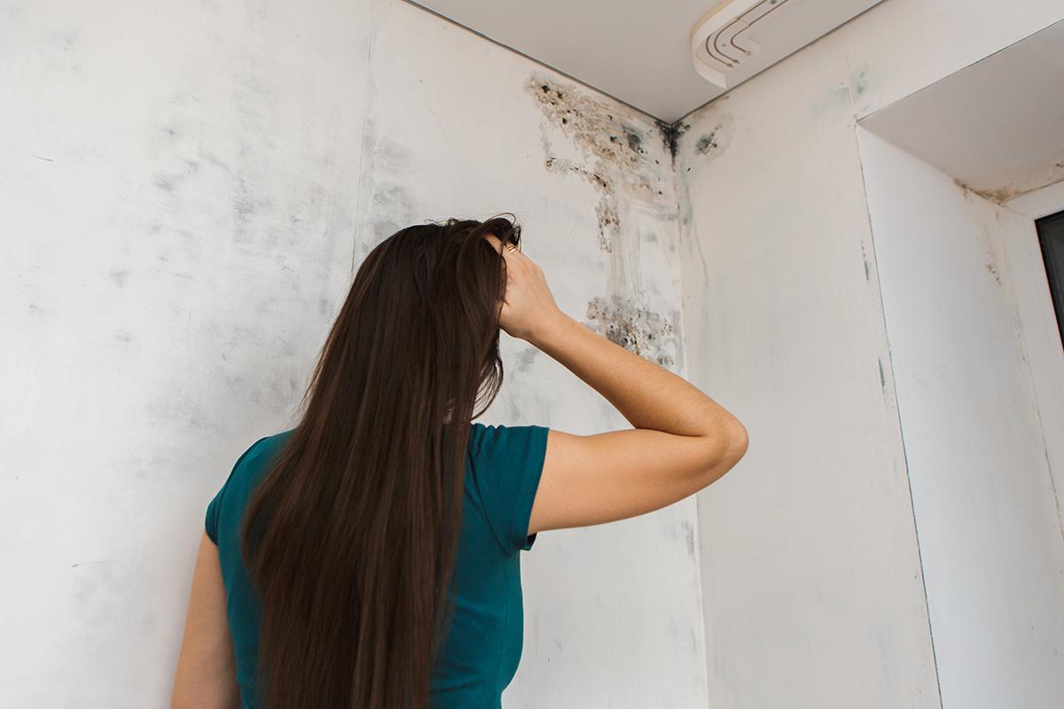 Las humedades en casa provocan algunas enfermedades respiratorias y alergias
