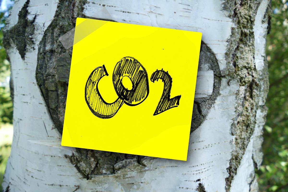 Minimizar la emisión de CO2 huella de carbono cero